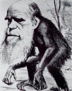 caricatura-darwin-1
